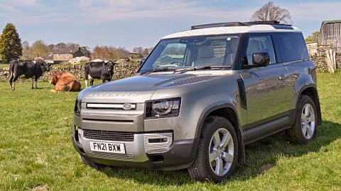 Land Rover Defender 90 and Cows