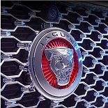 Jaguar badge.